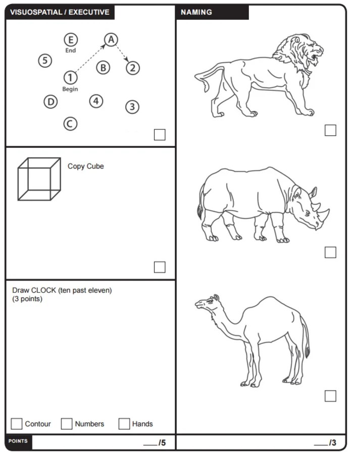 Trump's Test: Here Is The Montreal Cognitive Assessment