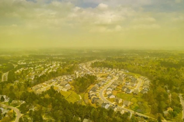 Image: An aerial view shows pollen haze tinting the environment yellow over an area in Durham, North Carolina