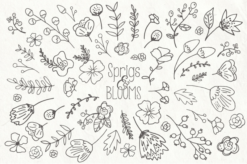 Sprigs & Blooms Clip Art & Vectors By Itty Bitty Paper Co