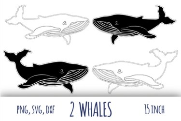 Whale svg Humpback whale clipart By bunart TheHungryJPEG com