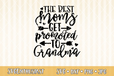 Download Grandmas Love Bugs Svg