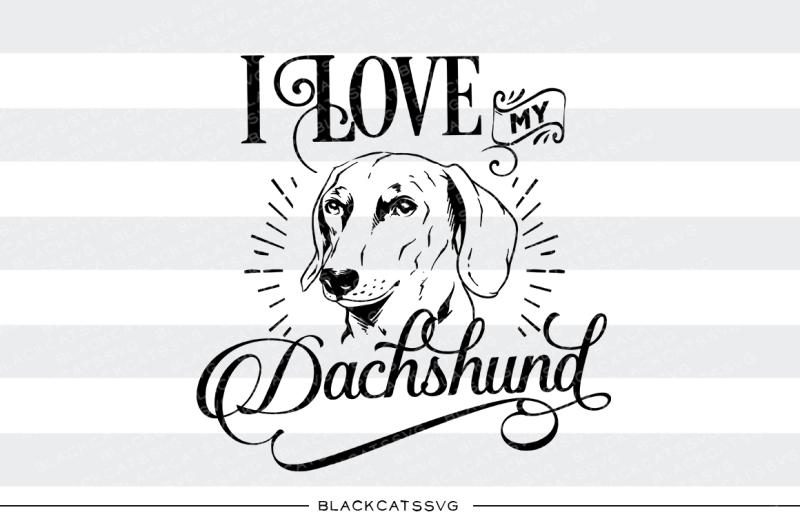 Download I love my Dachshund - SVG By BlackCatsSVG | TheHungryJPEG.com