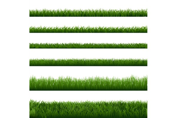 realistic grass borders. green