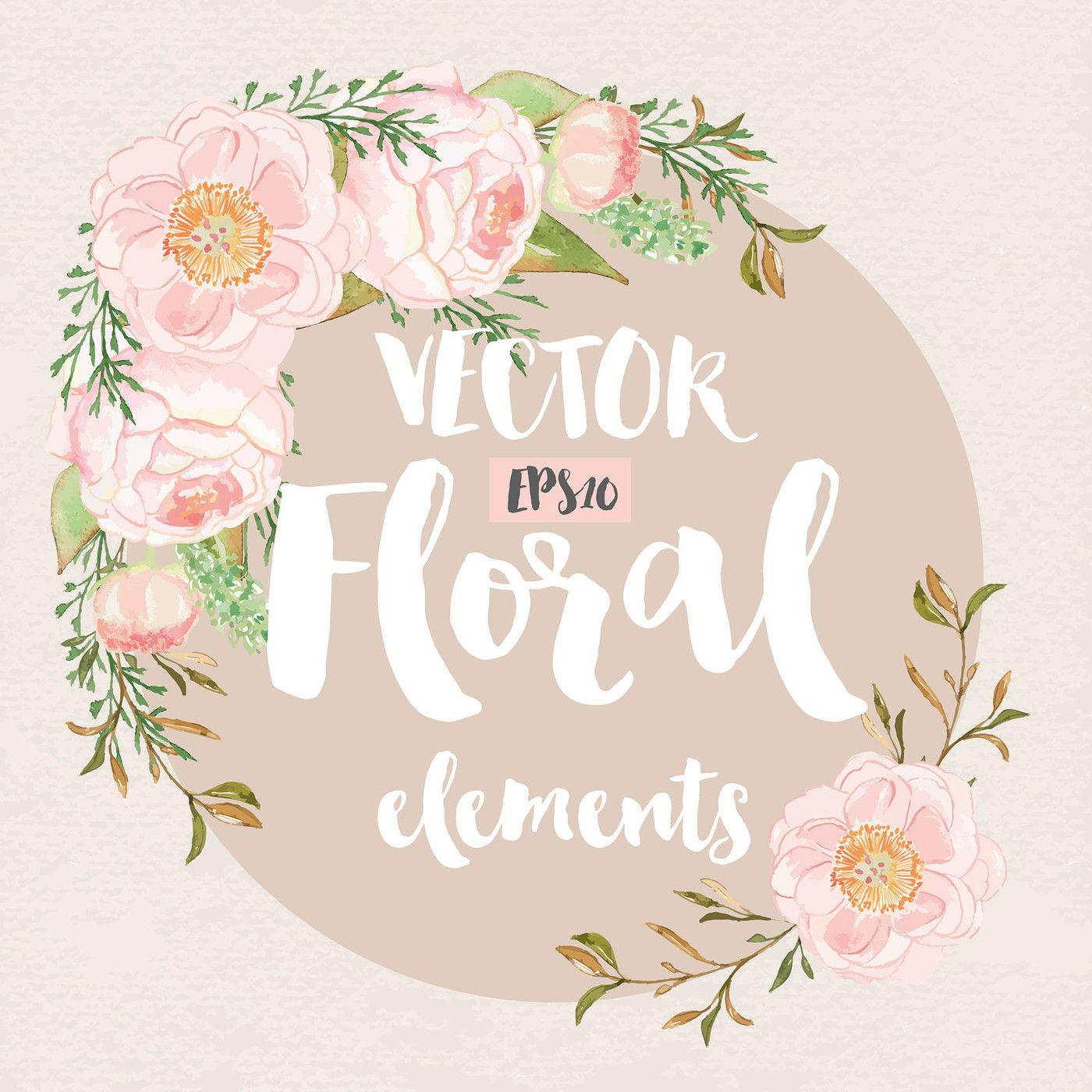 vector watercolor rose blush