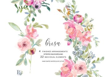 watercolor pink blush flowers clip hand painted clipart thehungryjpeg graphics designer