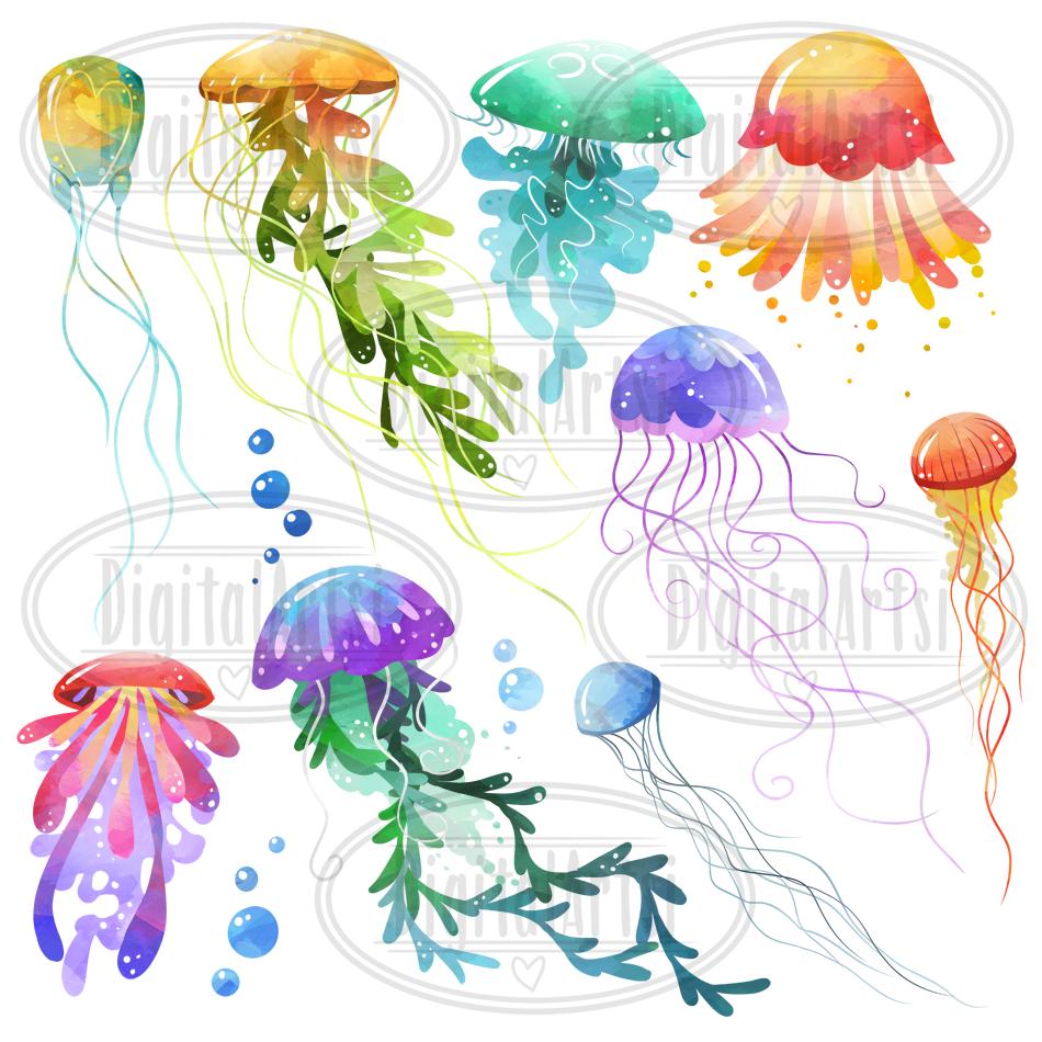 medium resolution of  watercolor jellyfish clipart