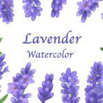 Lavender Flowers Watercolor By Irinashishkova Thehungryjpeg Com