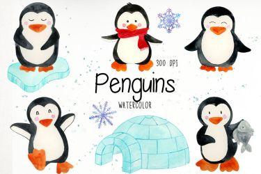 penguin clipart penguins clip watercolor illustrations camping thehungryjpeg cart information graphics designer follow