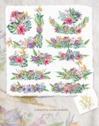 border clipart clip watercolor flower floral tropical exotic thehungryjpeg graphics