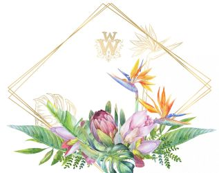 border floral tropical clip flower watercolor clipart exotic thehungryjpeg graphics