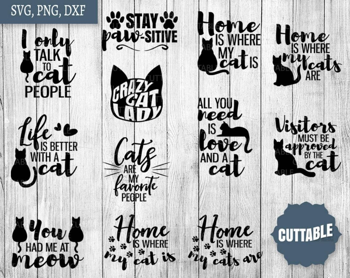 Download Cat lover SVG, Cat lady quote bundle, Cat cut files By ...