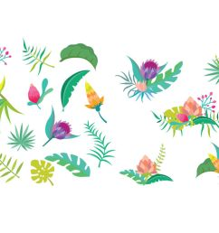 tropical flower clipart set [ 1160 x 772 Pixel ]