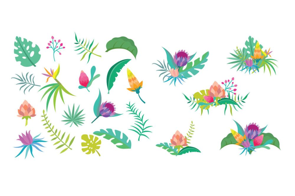 medium resolution of  tropical flower clipart set