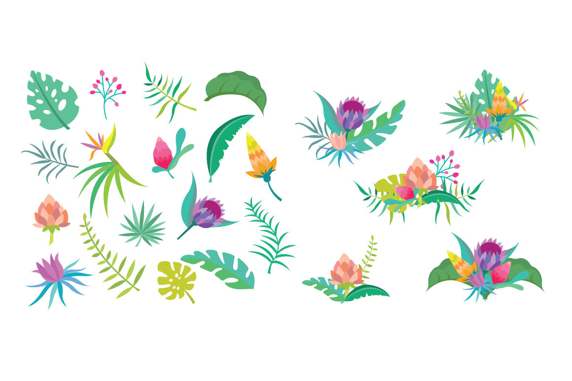 hight resolution of  tropical flower clipart set