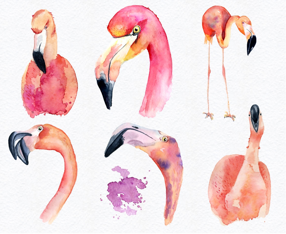 hight resolution of  watercolor flamingo clipart tropical summer set vol 2