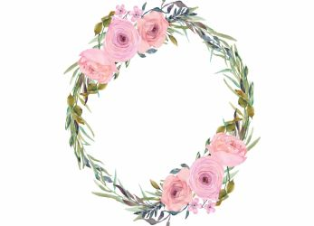 blush watercolor pink flowers clipart thehungryjpeg graphics cart
