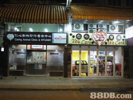 【獸醫】2020最新300個有關寵物獸醫之商戶聯絡資訊 - HK 88DB.com