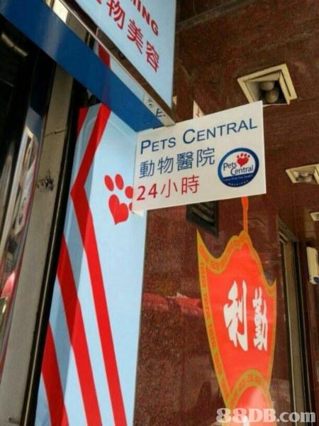 Pets Central Mongkok 旺角動物醫院 - HK 88DB.com