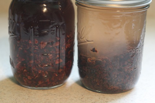 Week-old vodka/cacao infusion (left) and newly mixed demerara rum with cacao nibs