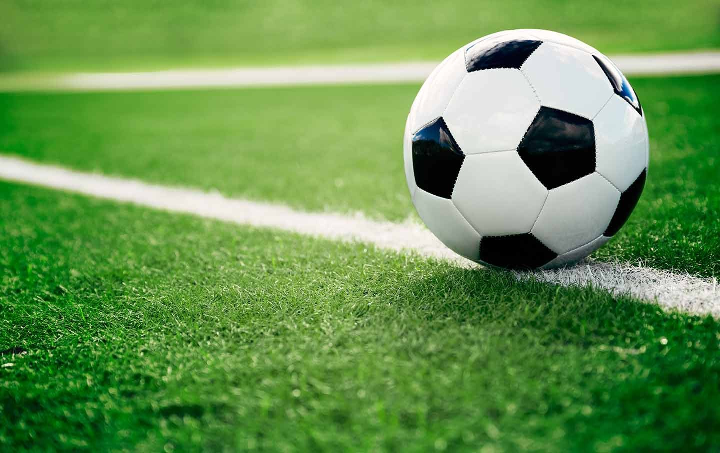 soccer putting down roots
