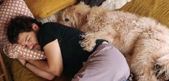 Dog Days Teaser Trailer