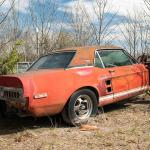 Little Red 1967 Ford Mustang Shelby Gt500 Found After 50 Years Could Be Worth Millions Fox News