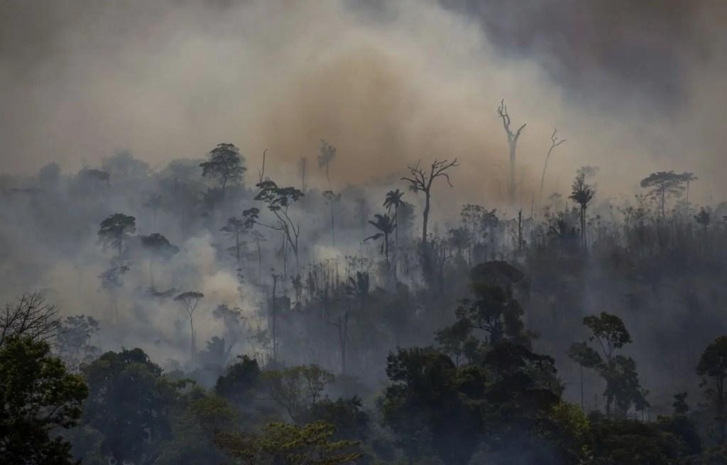 Brésil: forte augmentation des incendies en Amazonie