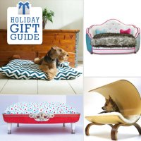Training boxer puppies not to chew, luxury dog beds australia