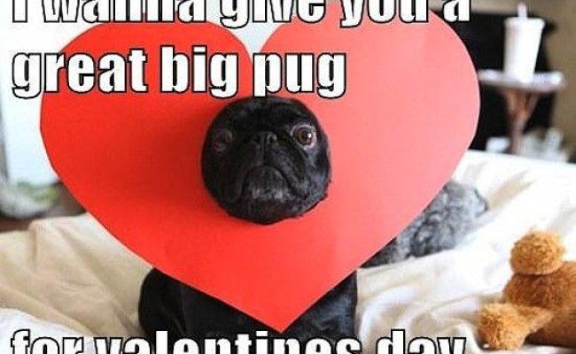Valentine S Day Memes Popsugar Tech