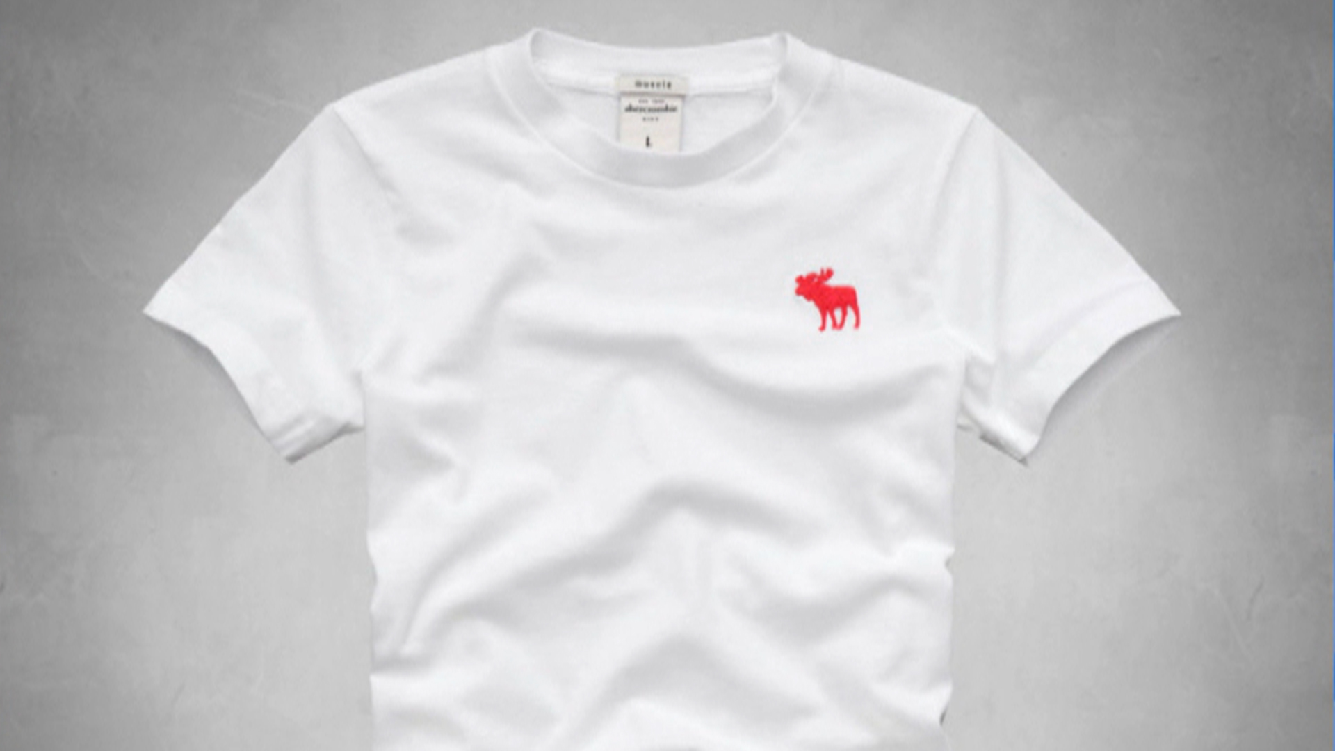 Abercrombie  Fitch to remove moose logo  TODAYcom