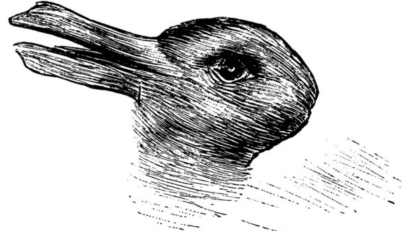 Duck and Rabbit Optical Illusion
