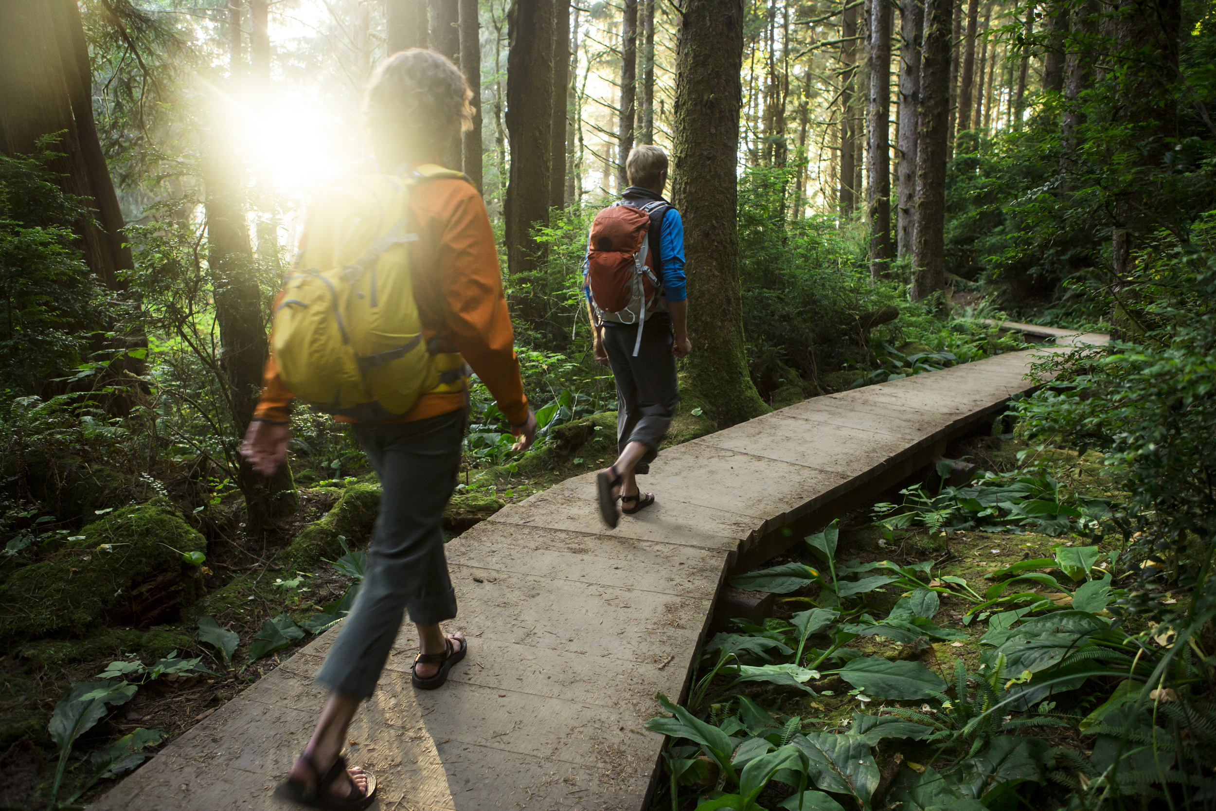 Why Walking Is the Most Underrated Form of Exercise