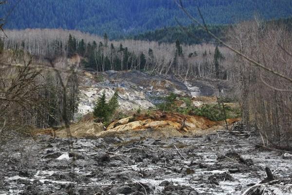 Washington Mudslide Toll Rises Eight With 18
