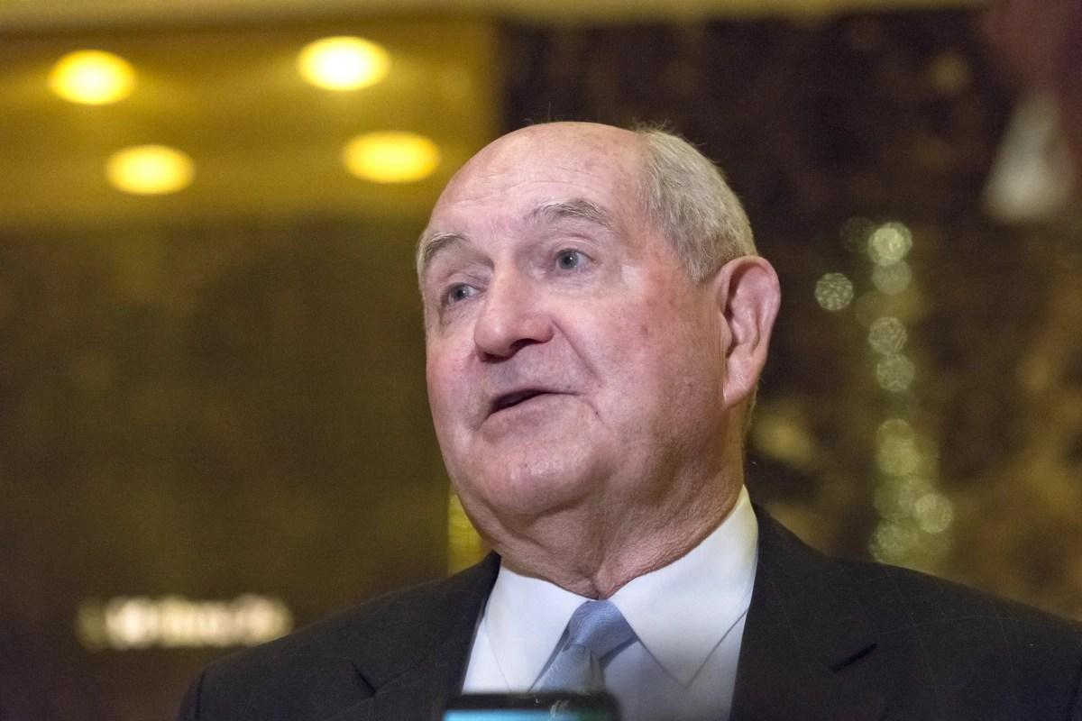 Donald Trump Taps Former Georgia Gov Sonny Perdue As