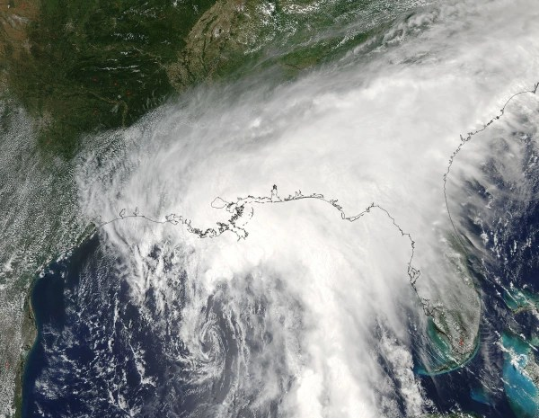 Image: Tropical Storm Cindy over the Gulf of Mexico
