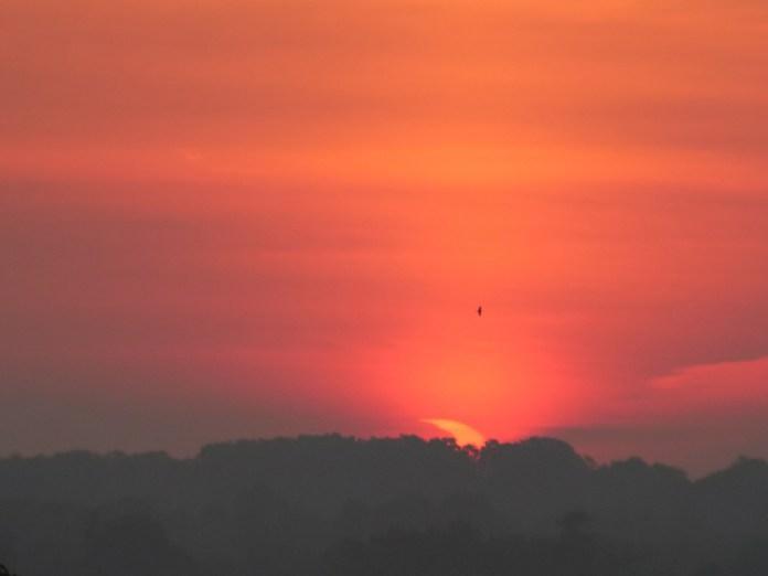 सूरज उगता है और आंशिक ग्रहण लंदन, ओंटारियो में देखा जाता है।  क्रेडिट: डेल आर्मस्ट्रांग, आरएएससी लंदन।