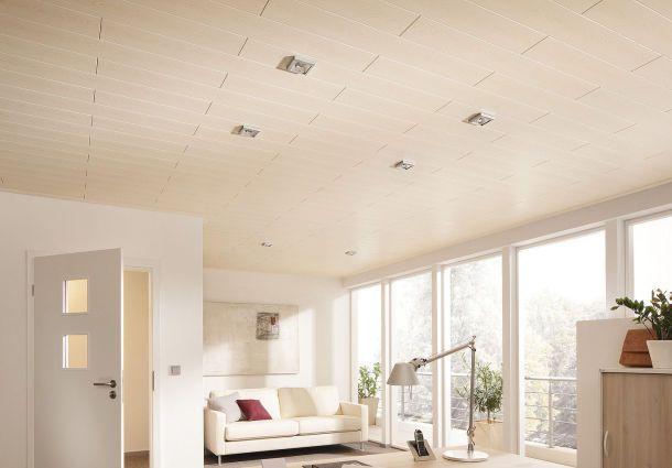 Paneele fr Wand und Decke Design und Funktion
