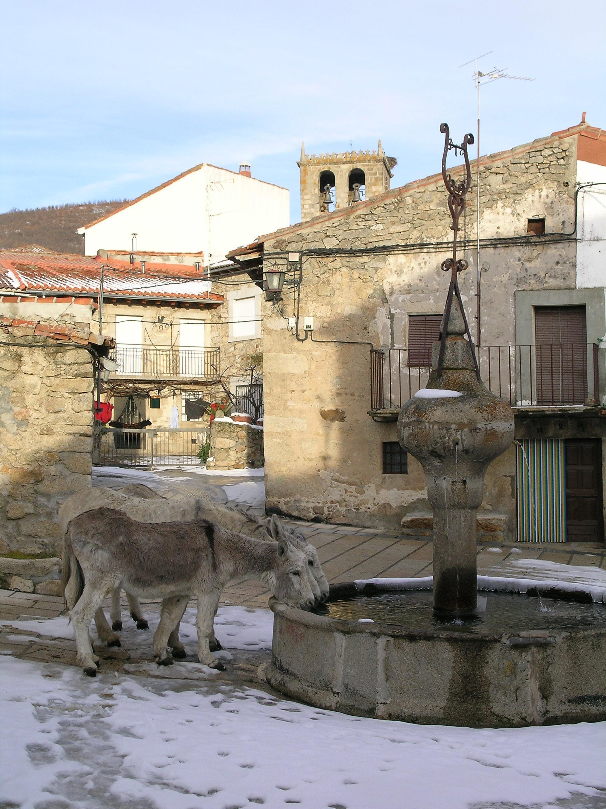 Fotos de La Tahona de Gredos  vila  Navalperal De