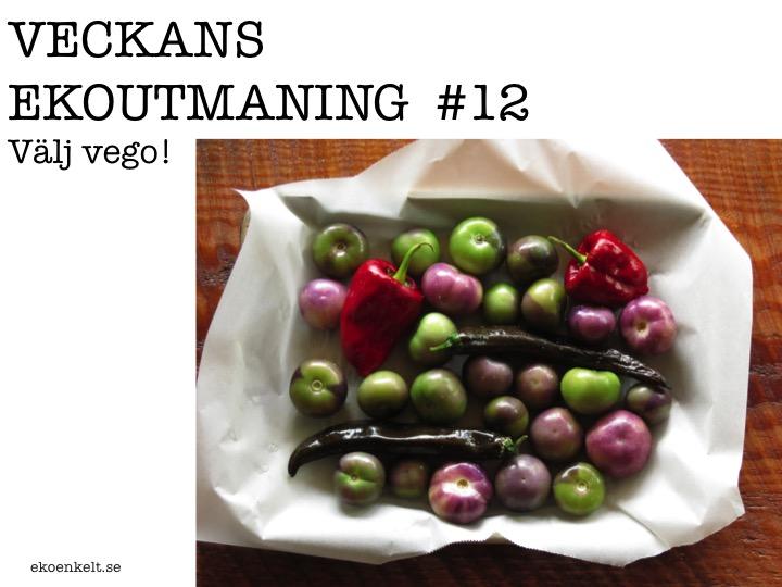 Veckans Ekoutmaning #12: Välj vego!