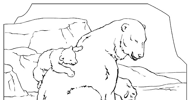coloring book animals a to i national geographic kids