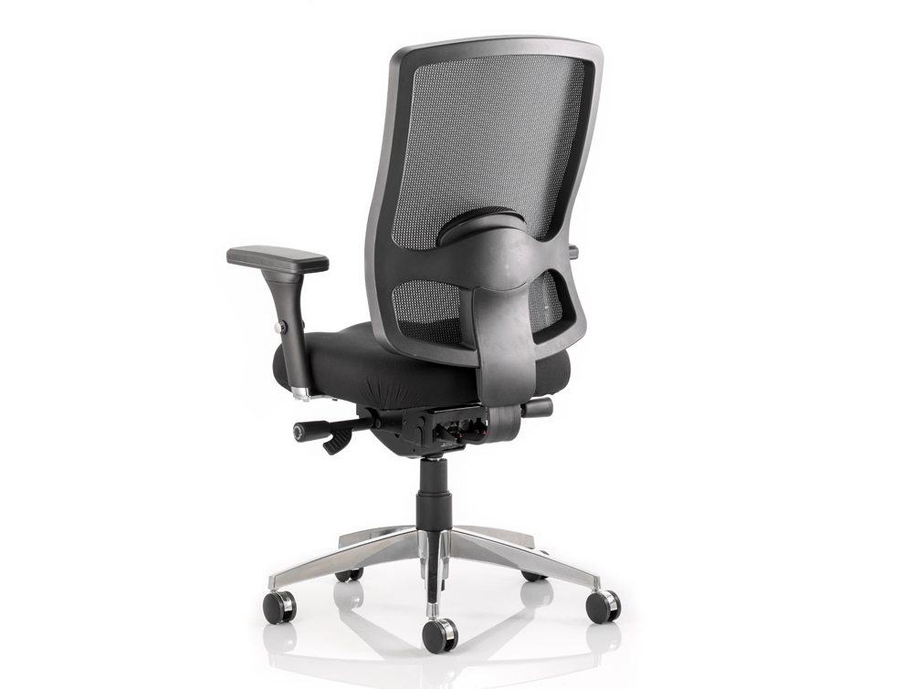 ergonomic task chair lumbar support potty training chairs dynamo regent mesh in black