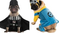 The most popular Halloween costumes for pets, from Star ...