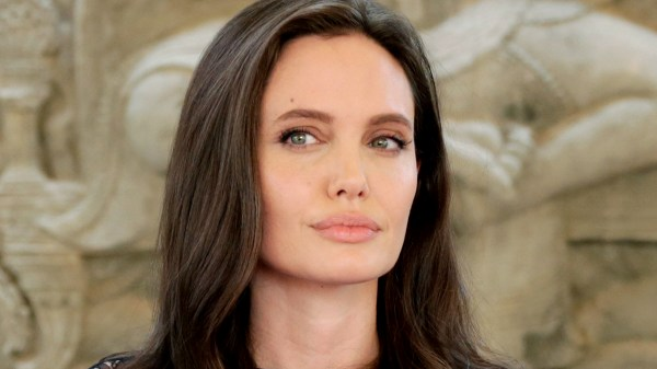 Angelina Jolie Split With Brad Pitt Family