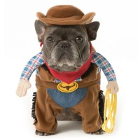 Fire Engine Dog Costume, Fire, Free Engine Image For User