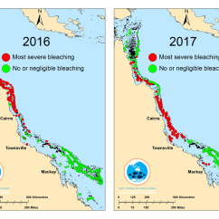 Coral Reef Food Chain Diagram Room Wiring Great Barrier Devastated By 39severe 39 Bleaching