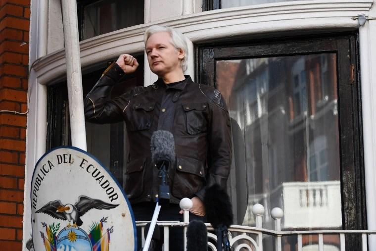 Image: WikiLeaks founder Julian Assange in 2017
