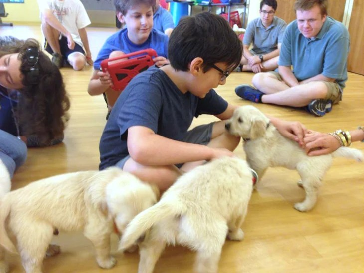 Students snuggle and play with puppies at the Lionheart School in Alpharetta, Georgia. The puppies will go on to become service dogs for war veterans and others with disabilities.