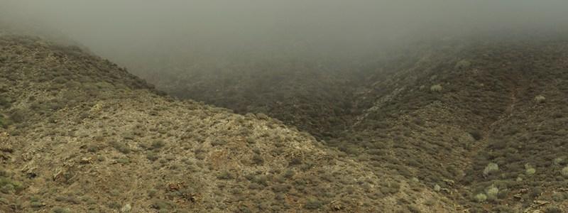 In i dimman, … (11/365)