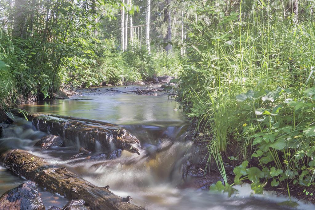En gömd oas