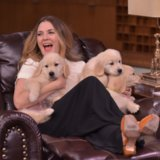 """Drew Barrymore gioca """"del quiz del cucciolo"""" e sì, i risultati sono svegli come suonano"""